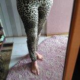 крутые штаны тигровые
