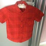 Рубашка красная LC Waikiki лимитированная коллекция Crew в идеальном состоянии на 9-10 лет подойдёт