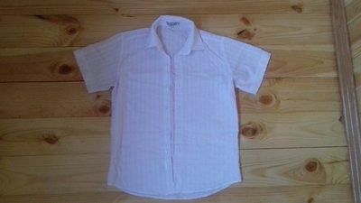 Тениска рубашка с коротким рукавом на 140-146 рост, длинна 62 см