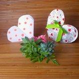 Букет з живих рослин, упаковка-серце у подарунок