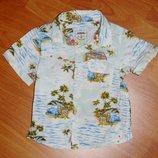 Стильная белая рубашка с машинками, Некст, 9-12 мес., 80, 1 год Состояние новой вещи