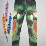Подростковые стрейчевые лосины леггинсы принт попугаи Zara .