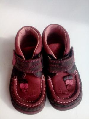 Ботинки, туфли осенние Clarks