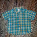Сочная шведка, рубашка с коротким рукавом Adams, 86 см, 12-18 мес