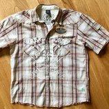 Рубашка на кнопках Next размер 146 см