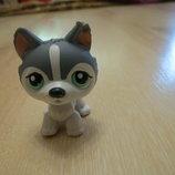 собачка стоячка littlest pet shop 2006 год