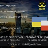 Работа в Польше, Оформление страховок