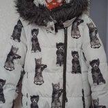 Куртка на осень next на 7 лет