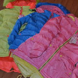 курточка евро-зима для девочки grace