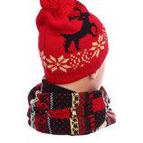 Зимняя шапка и шарф AL7970