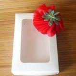 Упаковка для подарунку з віконечком і рослиною