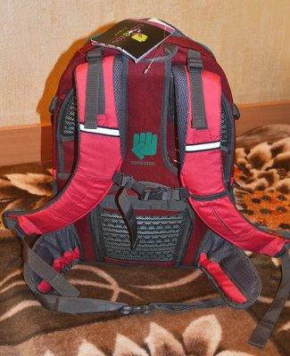 4e48b4a9071e Школьный рюкзак для средней и старшей школы Hama Coocazoo EvverClevver Rio