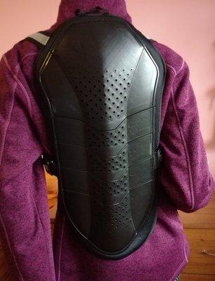 Защита для спины панцирь HAVEN Todos