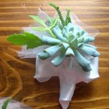 Бутоньєрки із живих рослин для нареченого