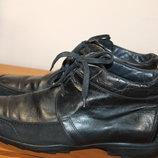Шкіряно замшеві черевики Van Lier