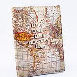 Обложка для водительских прав Карта мира