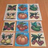 Игра Овощи и фрукты для детей от 2-х лет Распродажа