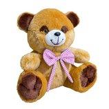 Мягкая игрушка Медведь Тимка маленький коричневый