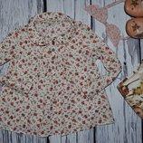 4 - 5 лет 110 см Рубашка блузка блуза для маленькой модницы Next некст