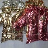 Куртка демисезонная для девочек 1-5 лет 5027
