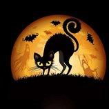 Алмазная вышивка Черная кошка