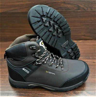 Мужские зимние ботинки Ecco Biom. VIETNAM. Доставка  1190 грн ... afde8e9293cb0