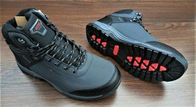 Мужские зимние ботинки Ecco Biom. VIETNAM. Доставка