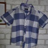 Рубашка 5 л 110 см Хлопок Некст