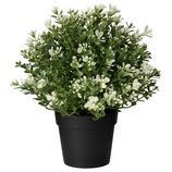 Искусственное растение в горшке, тимьян, 22 см Fejka 903.751.55 от Икеа Удачный выбор IKEA