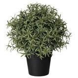 Искусственное растение в горшке, розмарин, 22 см Fejka 903.821.13 от Икеа Удачный выбор IKEA