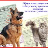 Оформление документов на собаку, кошку родословная, метрика