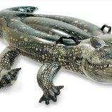 Надувн. Аллигатор 57551 винил,с ручками 3 лет ,рем комплект,в кор.170 86см