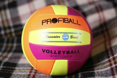 Волейбольный мяч Profiball , softtouch, 270 грамм, официальный размер