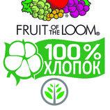 Футболка бесшовная 100% орг.хлопок Fruit of the Loom Самые модные цвета Марокко