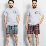Пижама мужская футболка и шорты M-2XL 1196
