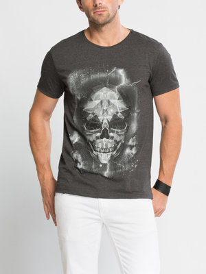 Мужская футболка серая LC Waikiki / Лс Вайкики с рисунком на груди
