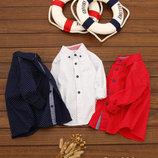 Рубашка Горох удлиненная 560040,560041
