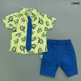 Костюм летний нарядный, расцветки, Тройка на мальчика Рубашка Шорты Галстук, Турция р.74-80-86-92-98