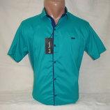 Распродажа. Мужская рубашка с коротким рукавом на кнопках Paul Semih, Турция. Разные цвета.