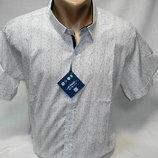 Шведка мужская Enisse белая с точками разм.2XL,4XL