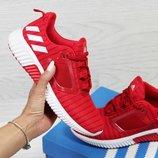 Кроссовки женские сетка Adidas Climacool W red