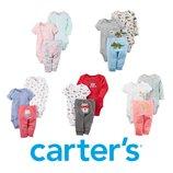 Копмлект попки Carters костюм хлопок бодик штанишки набор бодики