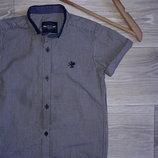 Next Рубашка 4 г 104 см Хлопок