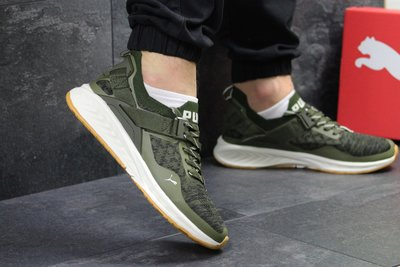 new product 021dd 4669b Кроссовки Puma Ignite Evoknit green