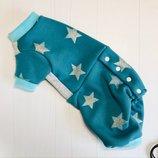 Одежда для кошек комбинезон Звёзды на голубом