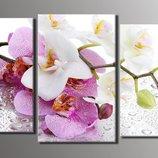 Модульная картина на холсте Орхидеи на стекле для интерьера