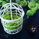 Коробочка для колец в стиле Greenery Эко свадьбы