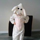 Прокат костюм зайчика зайчик зайчиков зайчика зайца зайки їжак, їжачок, ежик, ёжик Еж, Ежик Киев