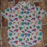рубашка котон лето 2-3года F&F большой выбор одежды 1-16лет