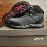 Серые мужские зимние ботинки кроссовки Ecco